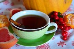 Chá do Natal da noite com canela Imagens de Stock Royalty Free