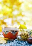 Chá do outono Imagens de Stock