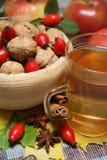 Chá do outono imagem de stock