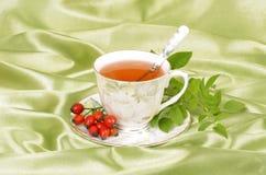 Chá do Rosehip Fotos de Stock