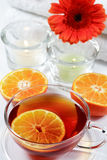 Chá do Wellness Fotografia de Stock Royalty Free