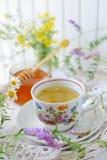 Chá do Wildflower e de camomila fotografia de stock