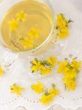 Chá do wort de St John Imagens de Stock Royalty Free