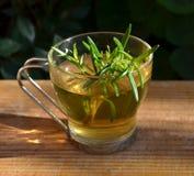 Chá dos alecrins Fotos de Stock Royalty Free