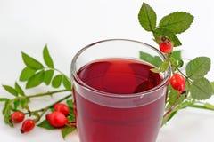 Chá dos Rosehips Fotos de Stock Royalty Free