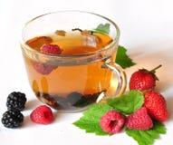 Chá e bagas Fotografia de Stock