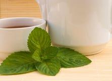 Chá e hortelã Fotografia de Stock Royalty Free