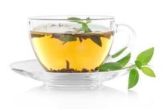 Chá e hortelã imagem de stock royalty free