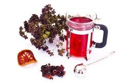 Chá e um filtro para as folhas Fotografia de Stock Royalty Free