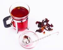 Chá e um filtro para as folhas Fotos de Stock