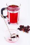 Chá e um filtro para as folhas Imagens de Stock