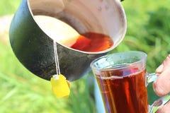 Chá em uma bandeja em um fundo da grama verde Fotografia de Stock
