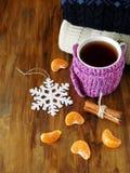 Chá em uma caneca envolvida no lenço minúsculo cercado por segmentos do mandarino Fotos de Stock Royalty Free