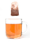 Chá erval imagem de stock