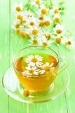 Chá erval com flores da camomila Fotografia de Stock
