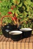 Chá erval em um jardim Fotografia de Stock