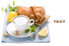Chá erval fresco da hortelã Fotografia de Stock