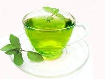 Chá erval verde com hortelã Imagens de Stock Royalty Free