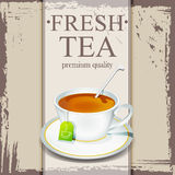 Chá fresco Fotografia de Stock Royalty Free