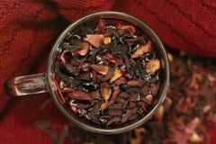 Chá fresco da romã em um copo imagens de stock royalty free