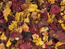 Chá Fruity Fotografia de Stock