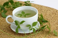 Chá /Gynostemma pentphyllum/de Jiaogulan Fotografia de Stock