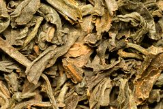 Chá indiano preto. Foto de Stock