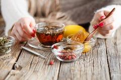 Chá morno do mel com ervas Fotografia de Stock Royalty Free