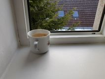 Chá na janela imagem de stock royalty free