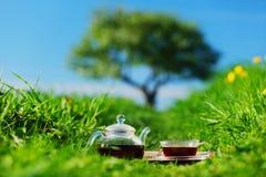 Chá natural Fotos de Stock Royalty Free