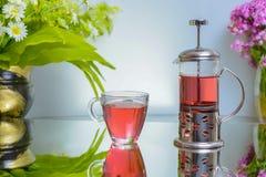 Chá natural da flor da romã fabricado cerveja Fotos de Stock Royalty Free