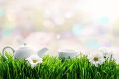 Chá natural na grama verde Fotografia de Stock Royalty Free