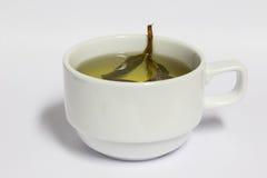 Chá no copo branco, bebida saudável Fotografia de Stock