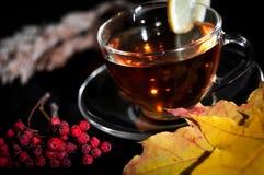 Chá no copo com o limão no fundo preto Imagens de Stock Royalty Free