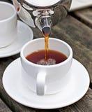 Chá no gramado Imagem de Stock Royalty Free