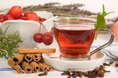 Chá no vermelho fotografia de stock