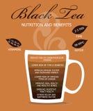 Chá preto da nutrição e dos benefícios Imagem de Stock