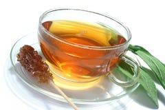 Chá prudente Imagem de Stock Royalty Free