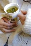 Chá prudente com mão da mulher Fotografia de Stock Royalty Free