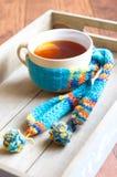 Chá quente Fotos de Stock Royalty Free