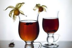 Chá quente com especiarias mim Fotografia de Stock Royalty Free