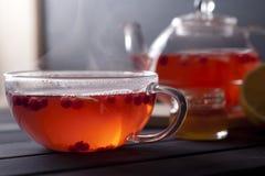 Chá quente do gengibre Fotografia de Stock Royalty Free