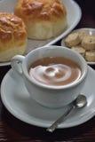 Chá quente do leite fotografia de stock royalty free