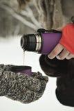 Chá quente em uma garrafa térmica nas mãos, no tempo de inverno da floresta em Rússia Fotografia de Stock Royalty Free