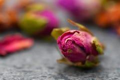 Chá Rosa pequeno imagens de stock royalty free