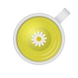 Chá saudável ilustração stock