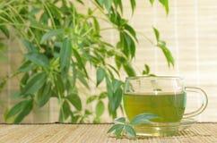Chá verde Imagem de Stock