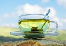 Chá verde Foto de Stock Royalty Free