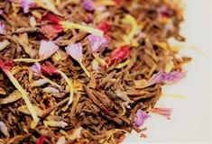 Chá verde com flores Foto de Stock Royalty Free
