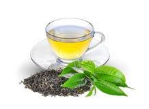Chá verde secado, folhas de chá verdes frescas e chá quente isolados foto de stock